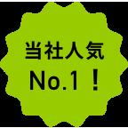 当社人気No.1!